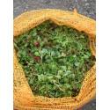 Sedumsprossenmischung für 1 m² Dachbegrünung